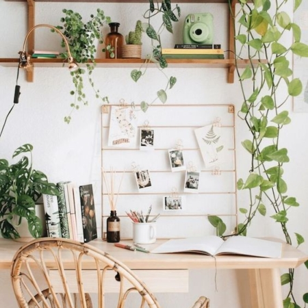 un bureau avec plantes